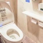 奥深きかなトイレ